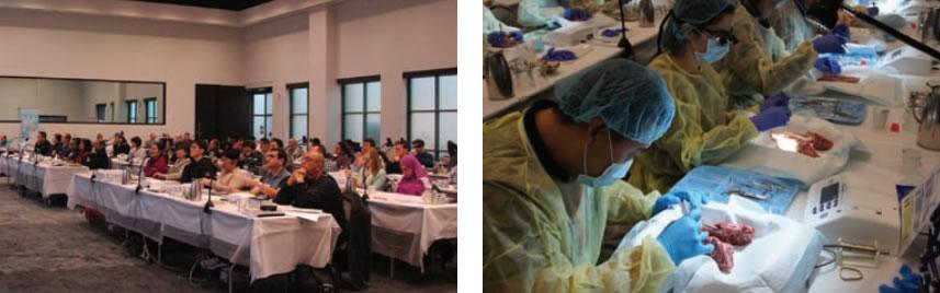 basic-implant-mini-residency-toronto-montreal-calgary